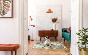 El naranja siempre sobresale en la decoración de interiores.Dora D'Agostino