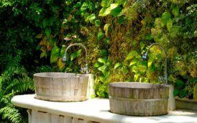 Involucra la naturaleza en tu vida. Un jardín vertical es una alterantiva preciosa, fácil y sustentable.