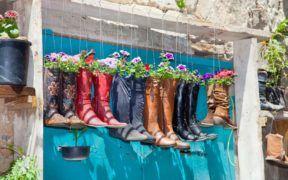 Si alguno de tus zapatos están viejos pero no quieres deshacerte de ellos, porque tienen un gran significado para ti, no los botes. Recíclalos usándolos como materas y colócalos como decoración en tu hogar o en el jardín.