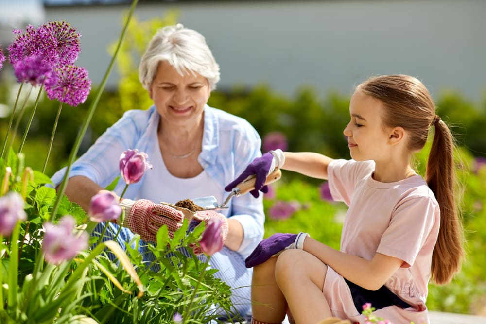 La buena salud depende en gran parte de factores ambientales.