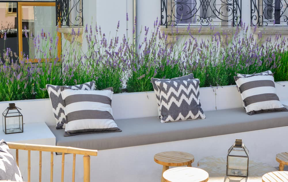 Cambia el orden de los accesorios al redecorar la casa para que tengas espacios renovados